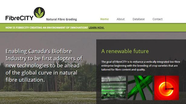FibreCITY Web Site